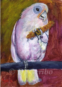 cockatoo-snacking-painting-by-artist-dj-geribo.jpg